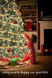Merry Xmas and Happy New Year 2013