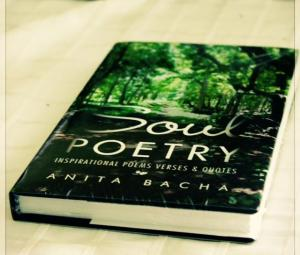 Launching of SoulPoetry